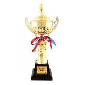 Кубок мастер спорта  высота=40 см.