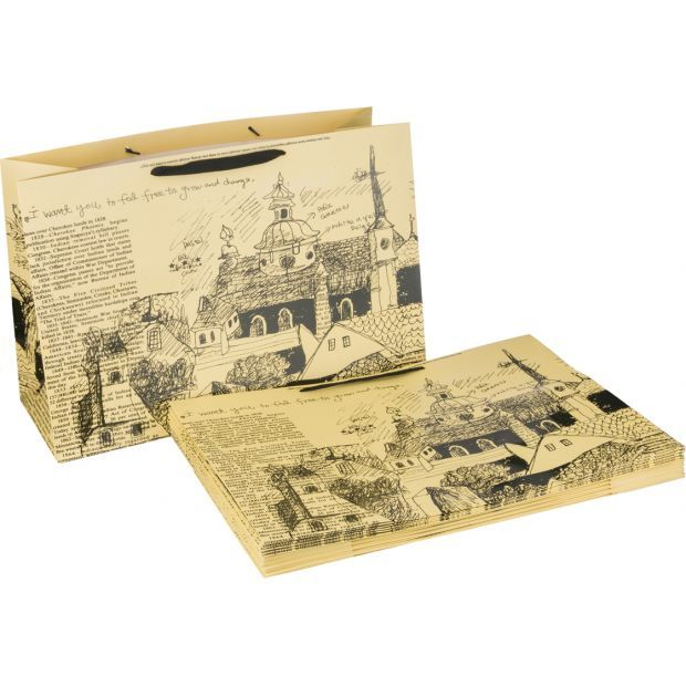 Комплект бумажных пакетов из 10 шт. 46*35*15 см  (кор=15комп.)-521-001