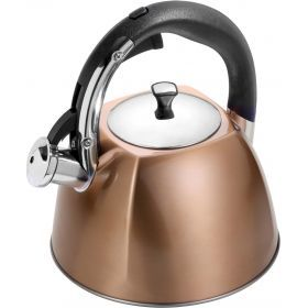 Чайник со свистком 3,0 л. индукционное капсульное дно-937-616